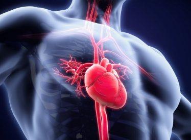 راههای بهبود جریان خون در بدن