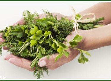 تاثیر گیاهان دارویی در کاهش چربی خون