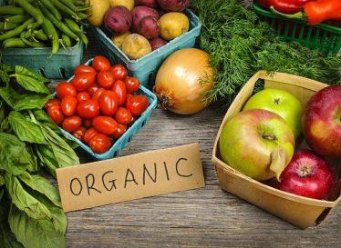 درباره گیاهخواری و خامخواری بیشتر بدانیم